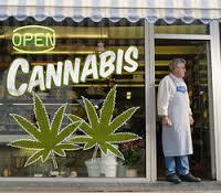 Canabis shop