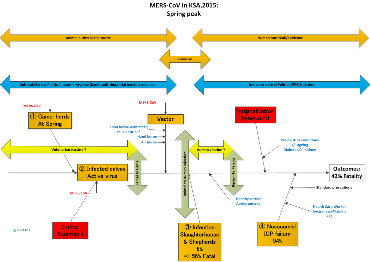 Mers The Ad Spread Camel Washing Machine Wiring Diagram Risk Exposure And Factors 2015