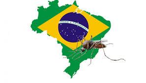 brésil et moustiques