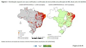 Brazil risk map mid march 2016