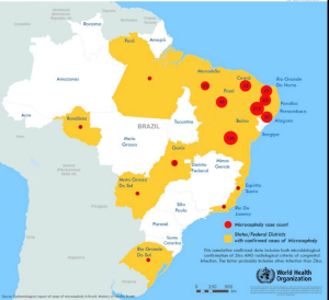 Zika Map Brzail