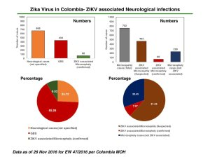 zika-related-microcephaly-numbers-colombia